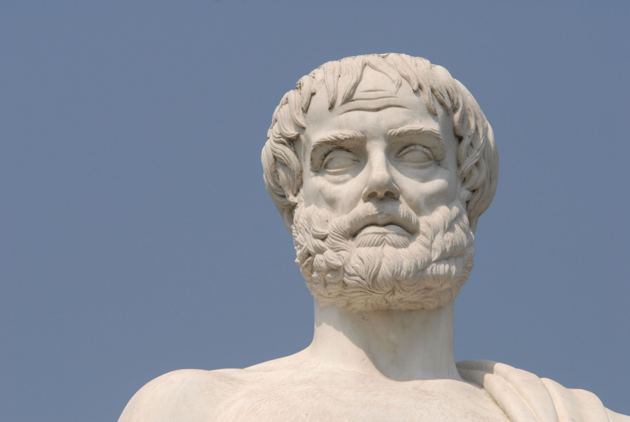 aristotle political animal Aristotle's politics is comes to this conclusion because he believes the public life is far more virtuous than the private and because men are political animals.