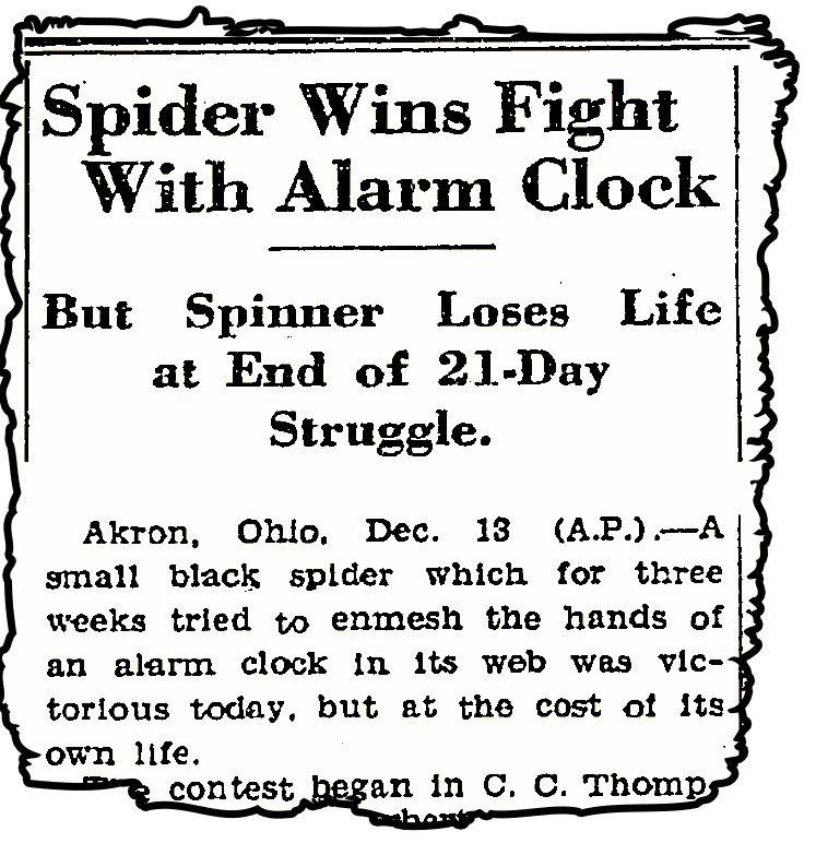 spider obituary