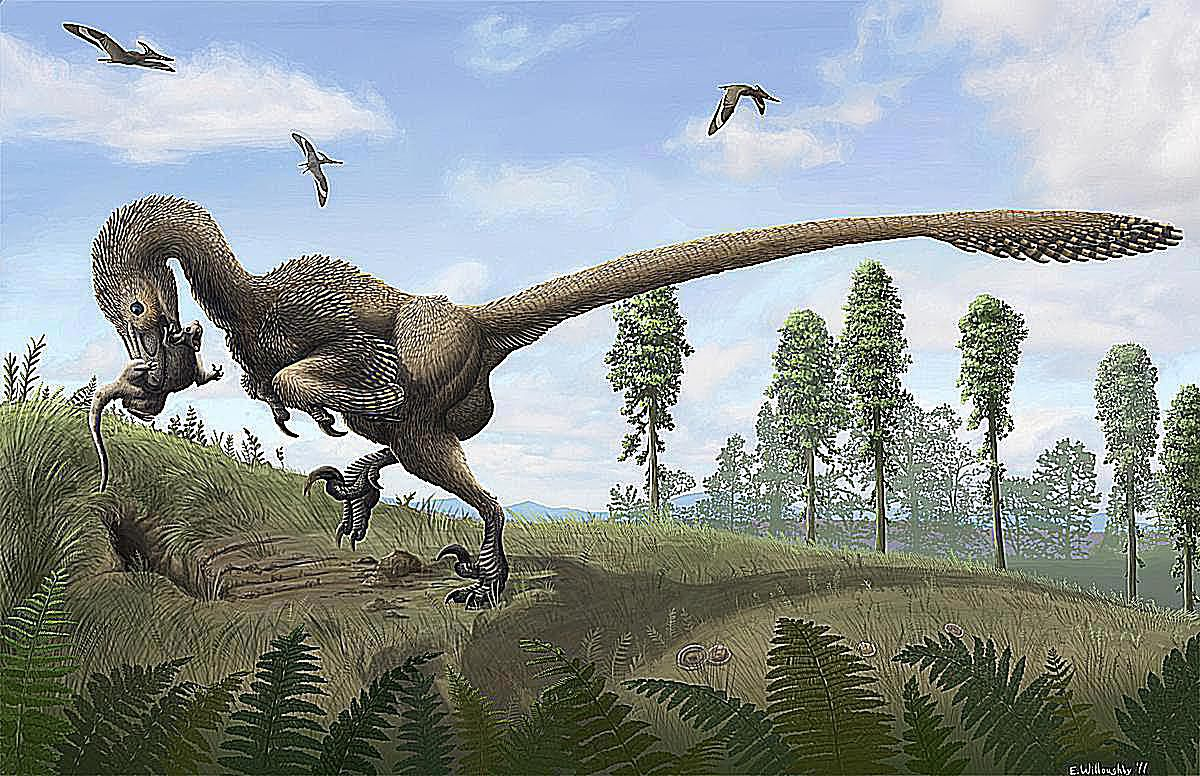 pictures and profiles of raptor dinosaurs