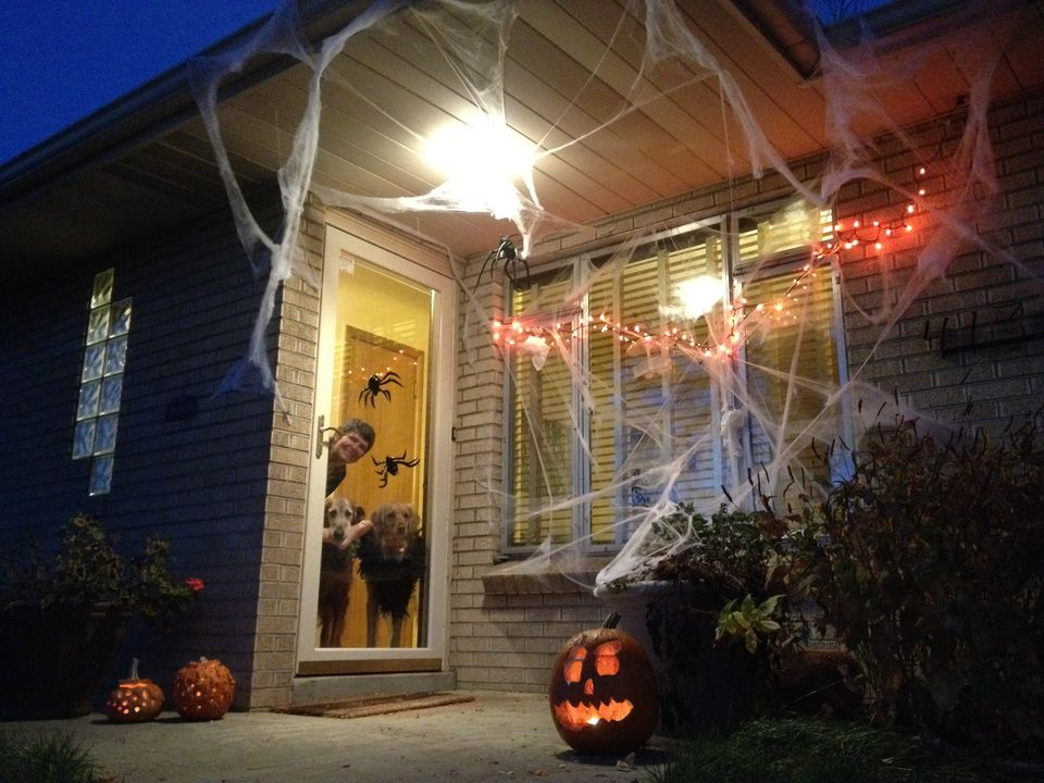 Woman and dogs look out glass door at halloween
