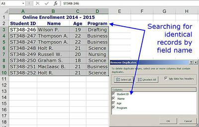 how to create a searchable database in excel