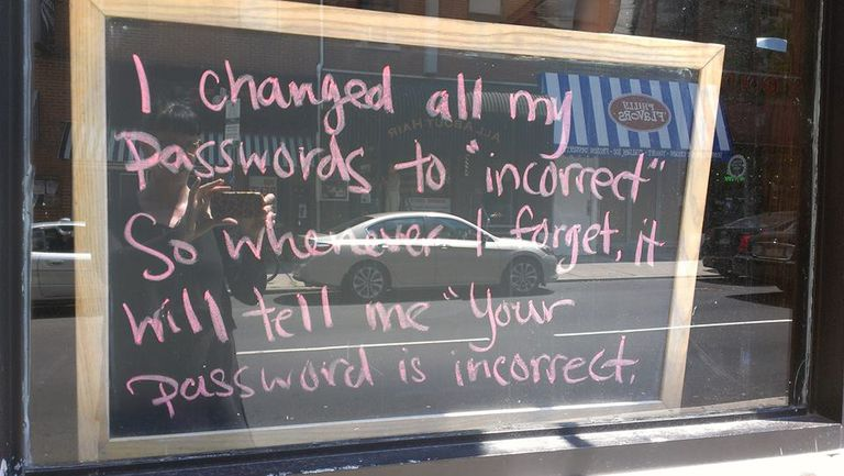 9415848746_4c13527434_o-Lulu-Hoeller-Incorrect-Passwords-.jpg