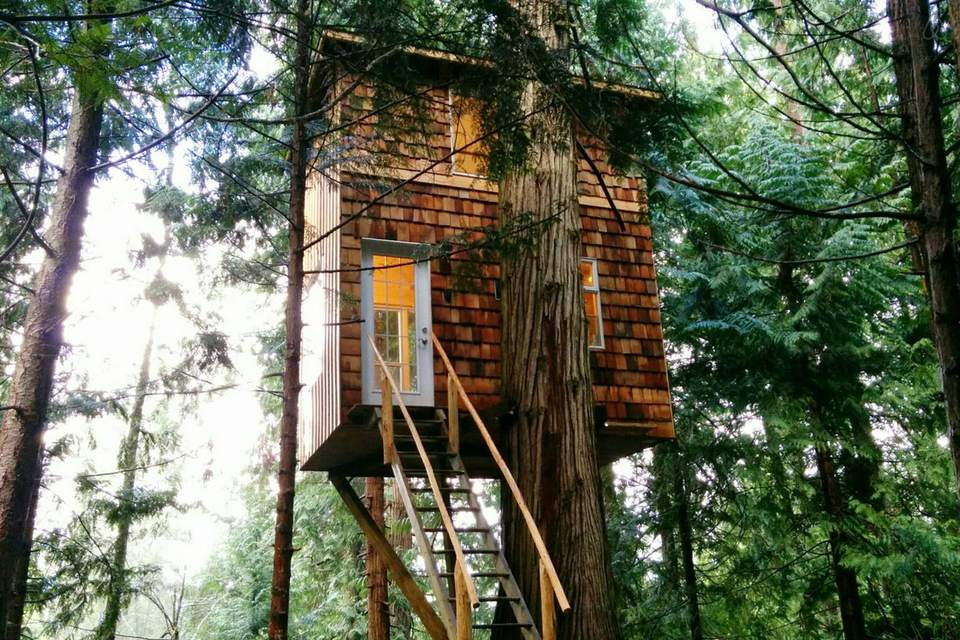 A tree top retreat that cost 8 200 for How much does it cost to build a farmhouse