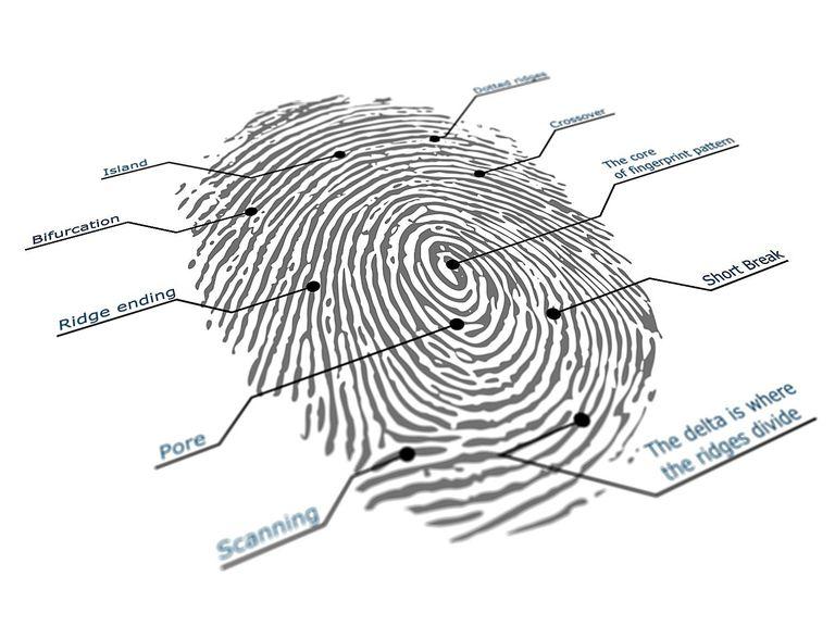 Annotated Fingerprint