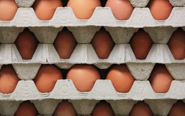 Cage-Free Eggs
