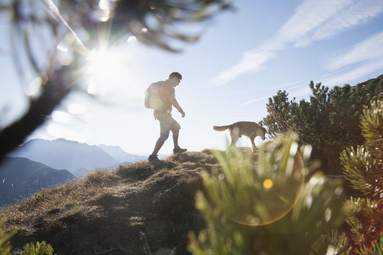 Man walking uphill with his dog