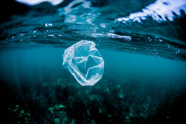 Floating plastic bags can be mistaken for jellyfish by sea turtles.