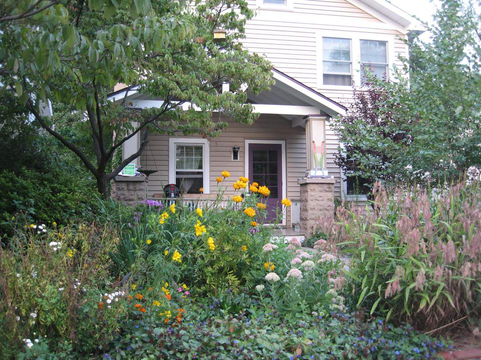 native garden in front yard