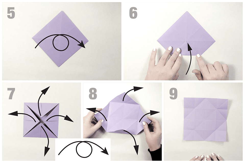 Simple origami Instructions ; butterfly   Origami butterfly ...   640x960