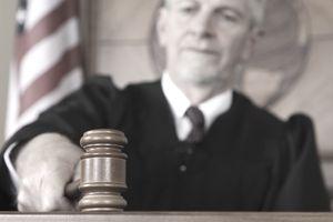 judge, trial, civil litigation