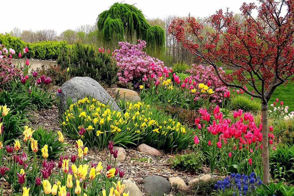 Colorful Yard