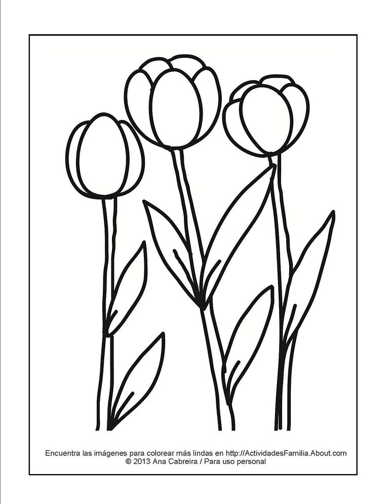 Dibujos de flores para colorear