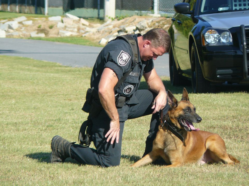 Police Dog with Officer