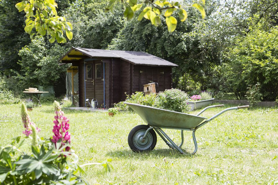 Work Shed with Rolled Roofing