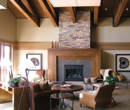 Stone Fireplace Surrounds - Photo Gallery and Ideas