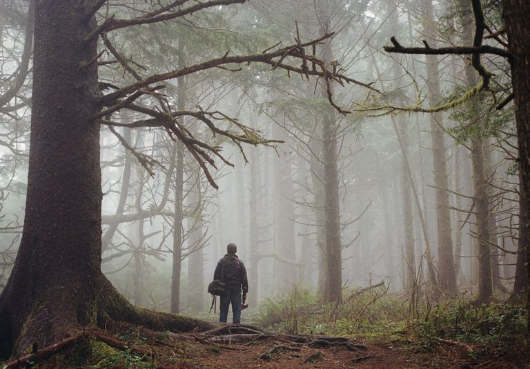 Man Standing in Spooky Forest