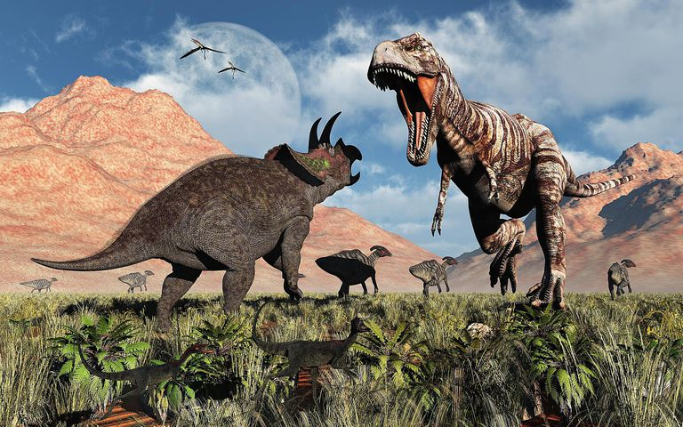 Prehistoric battle between a Triceratops and Tyrannosaurus Rex.