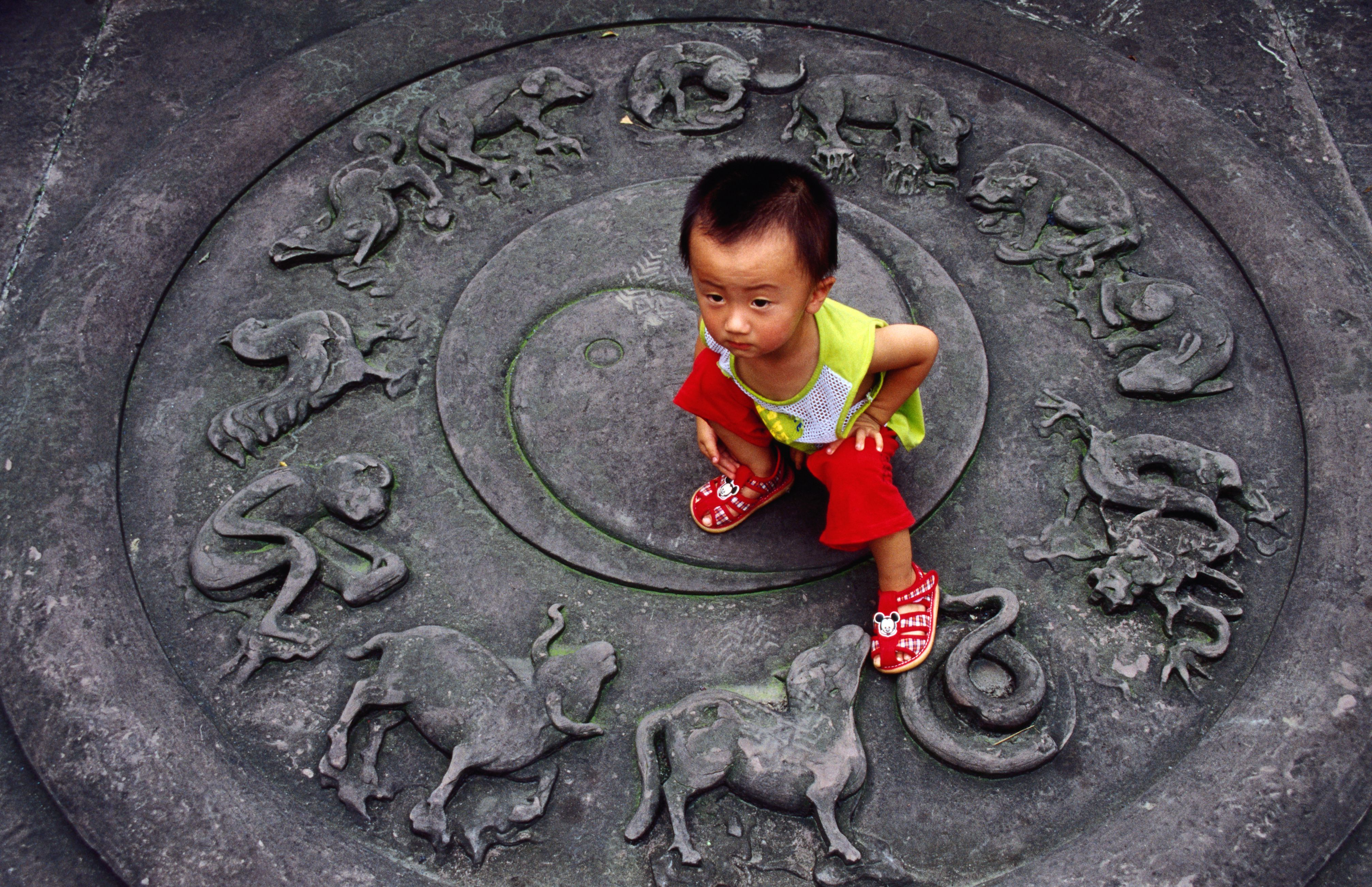 suzanne white on how chinese astrology works