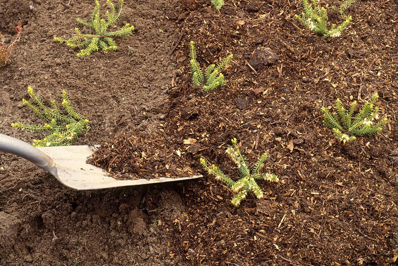 garden mulch types when and how to use them