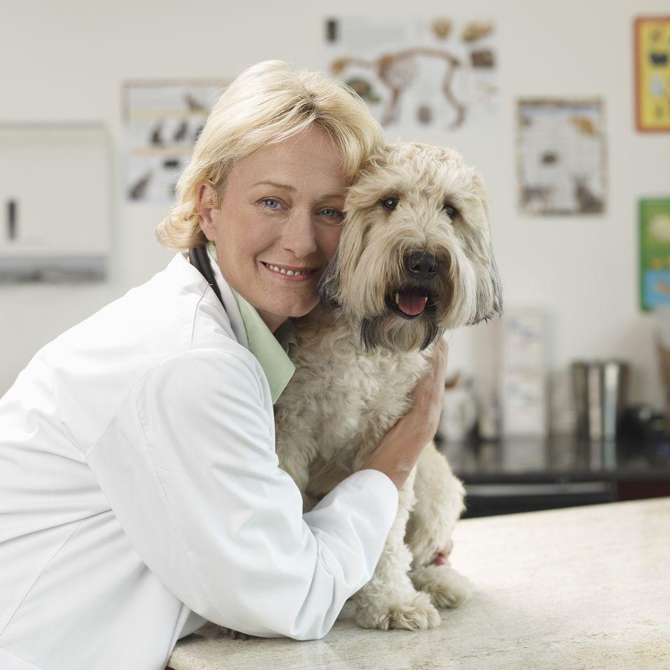 veterinarian hugging dog