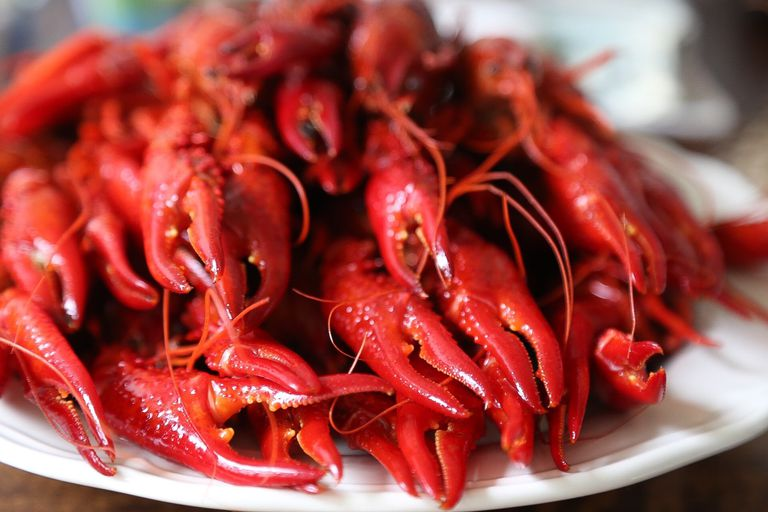 Close-Up Of Cooked Crayfish In Plate