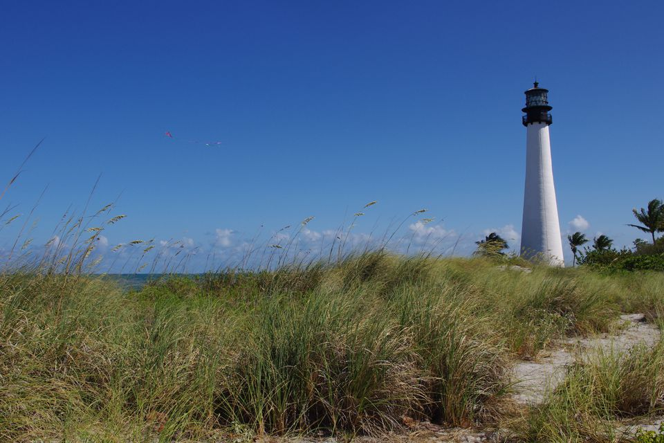 Cape Florida lighthouse and grassy dunes