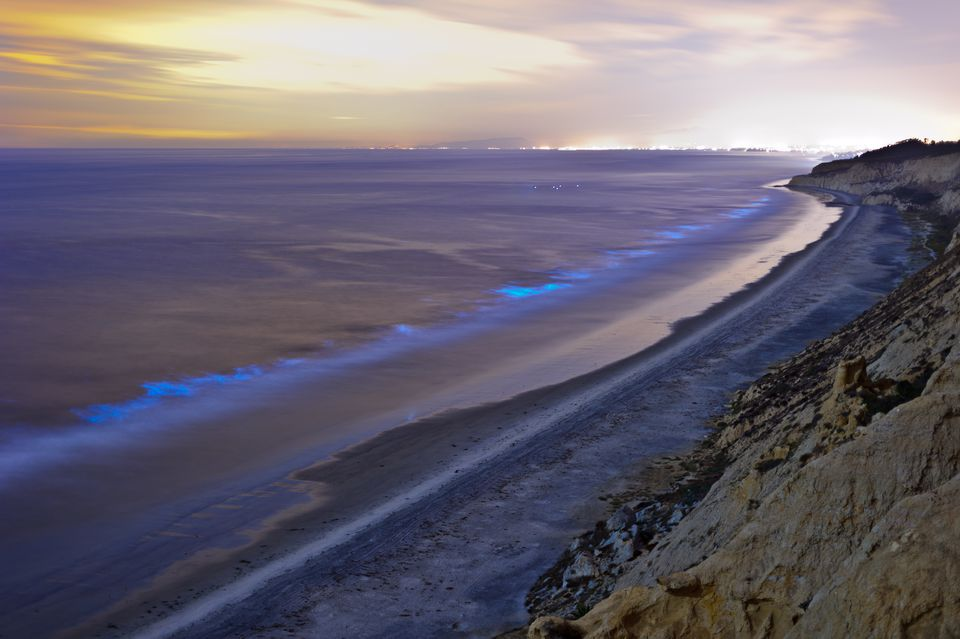 Red Tide at Torrey Pines State Beach Near San Diego