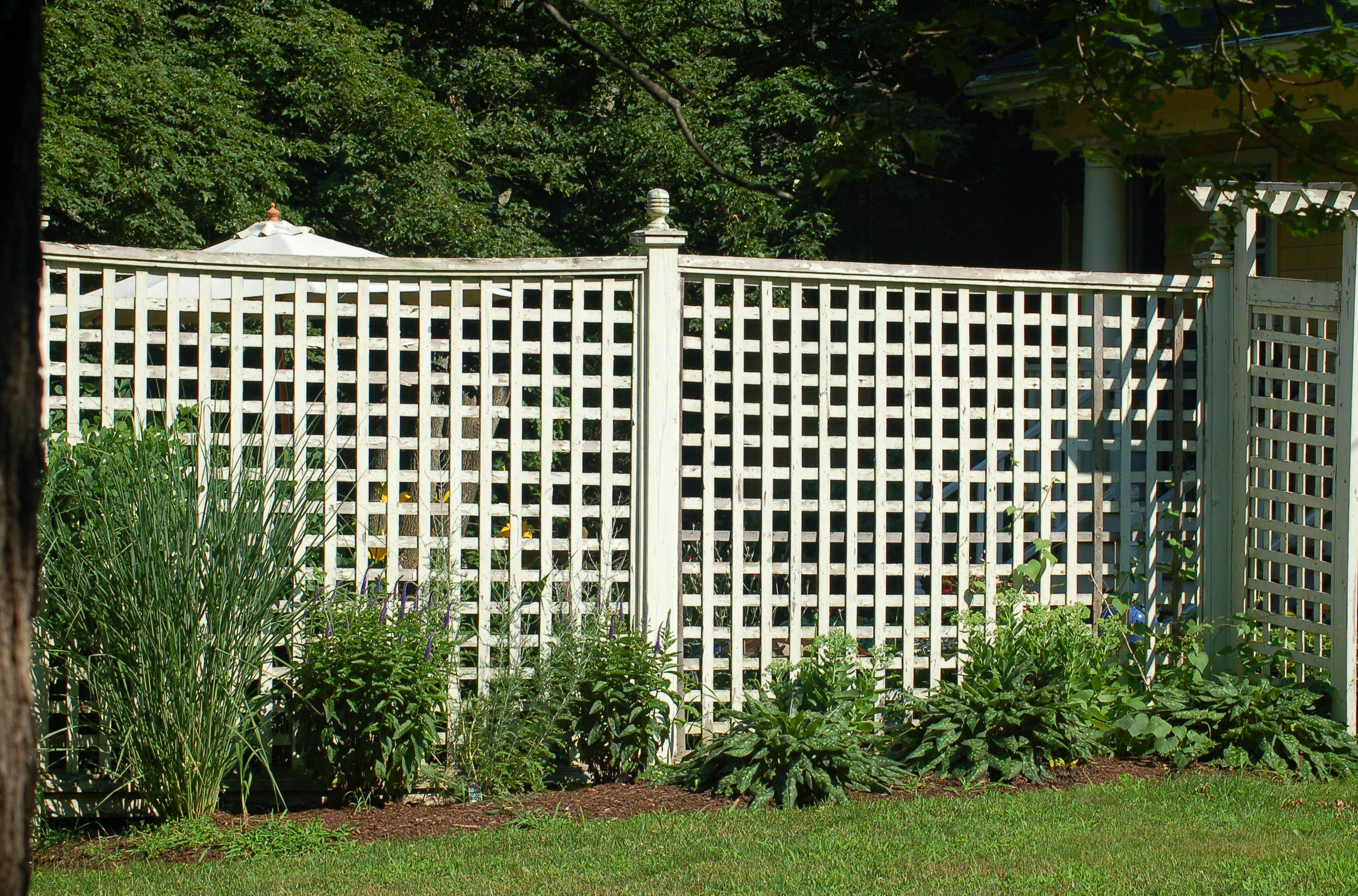 What Kind Of Paint Is Best For Wood Fences