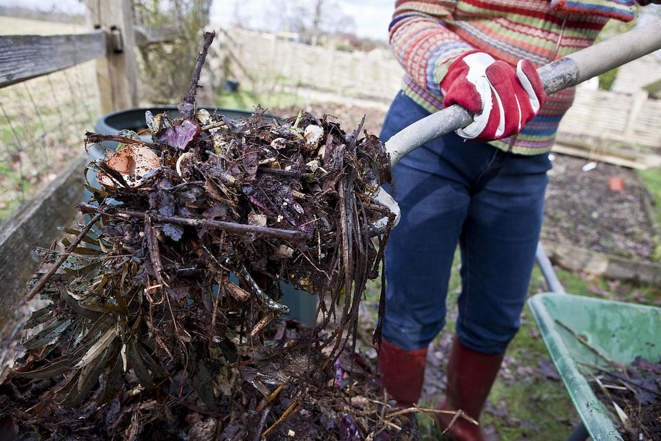Composting Garden and Food Waste