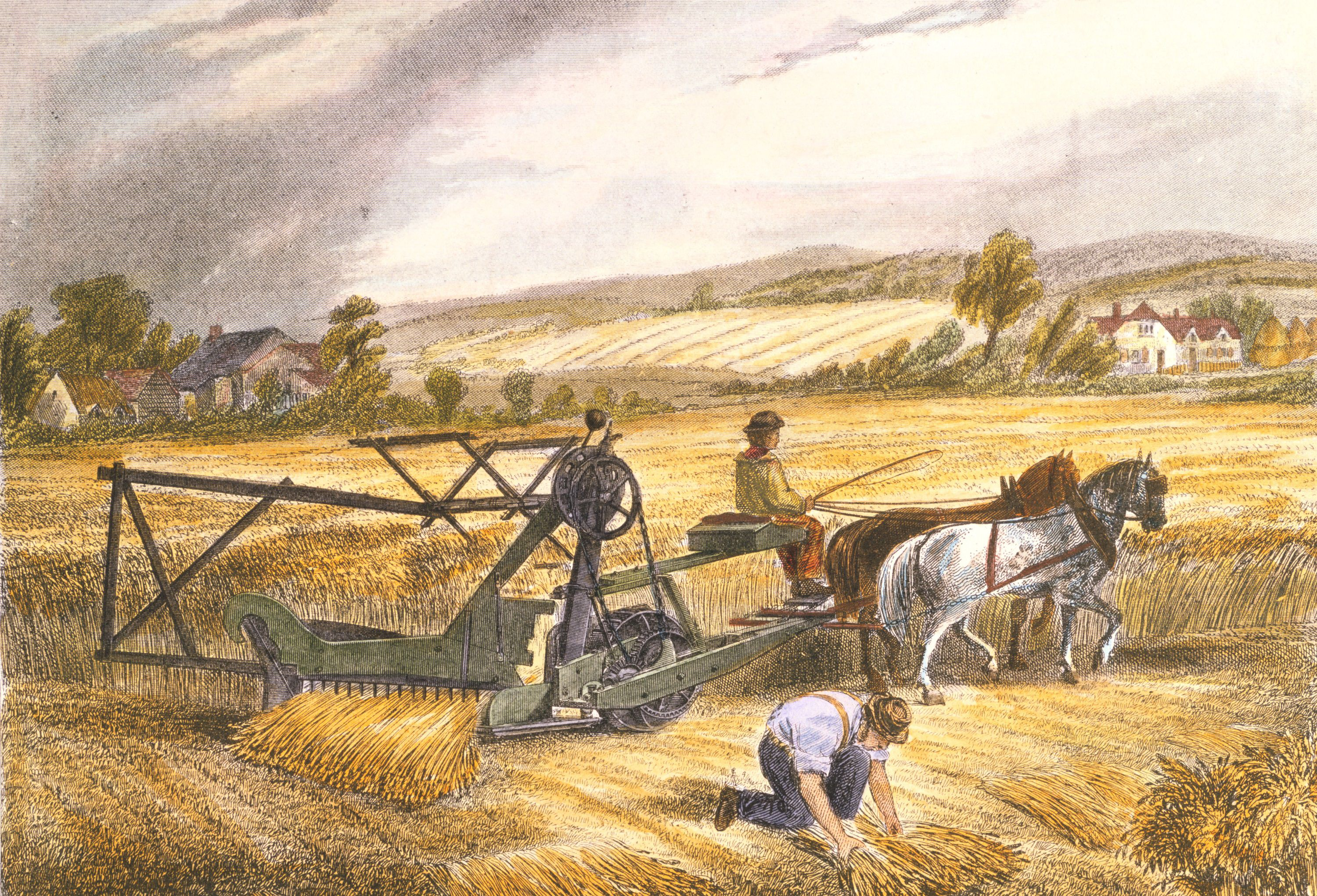 the british agrarian revolution For many years the history of english agriculture since the sixteenth century has  been dominated by rival notions of an 'agricultural revolution': a period when.