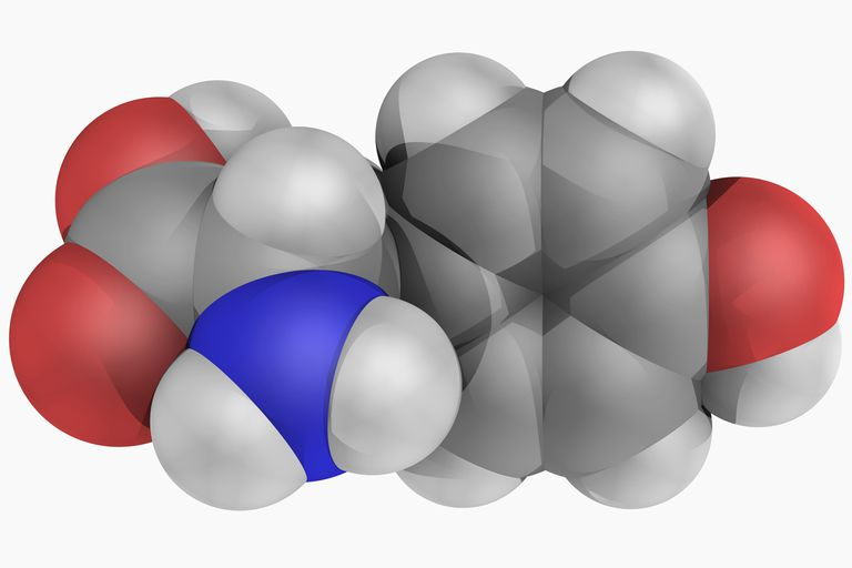 Illustration of a tyrosine molecule.
