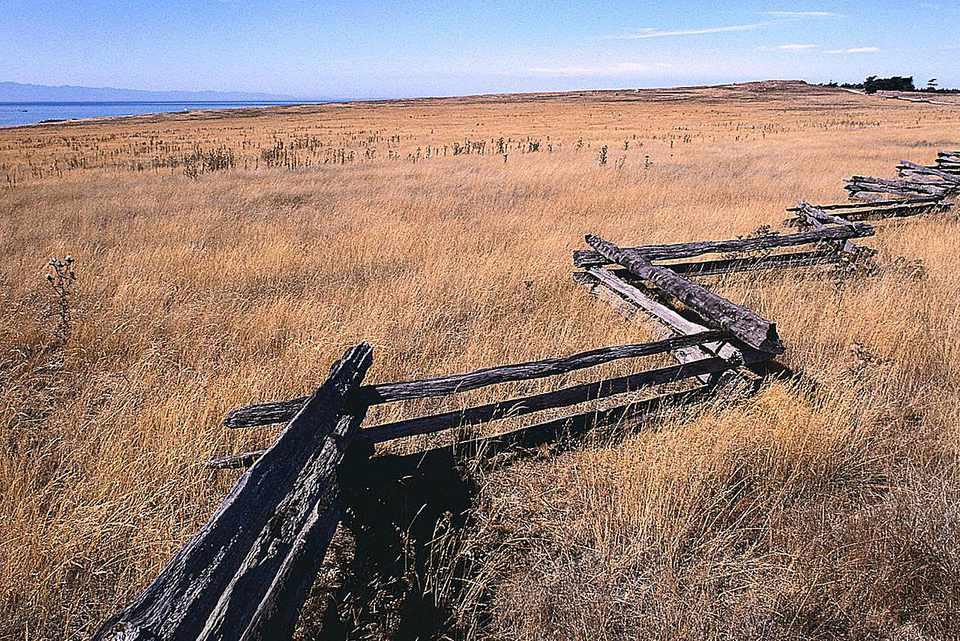 Image: zig-zag style wooden fence.