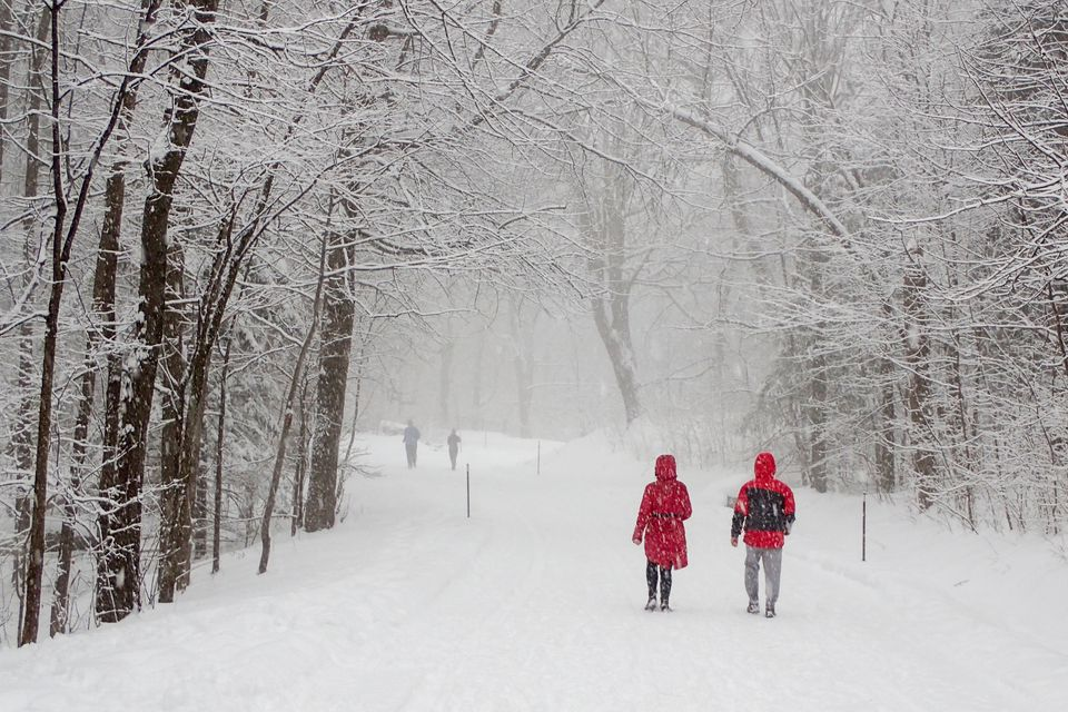 Top winter hikes near Montreal include Mount Royal Park.
