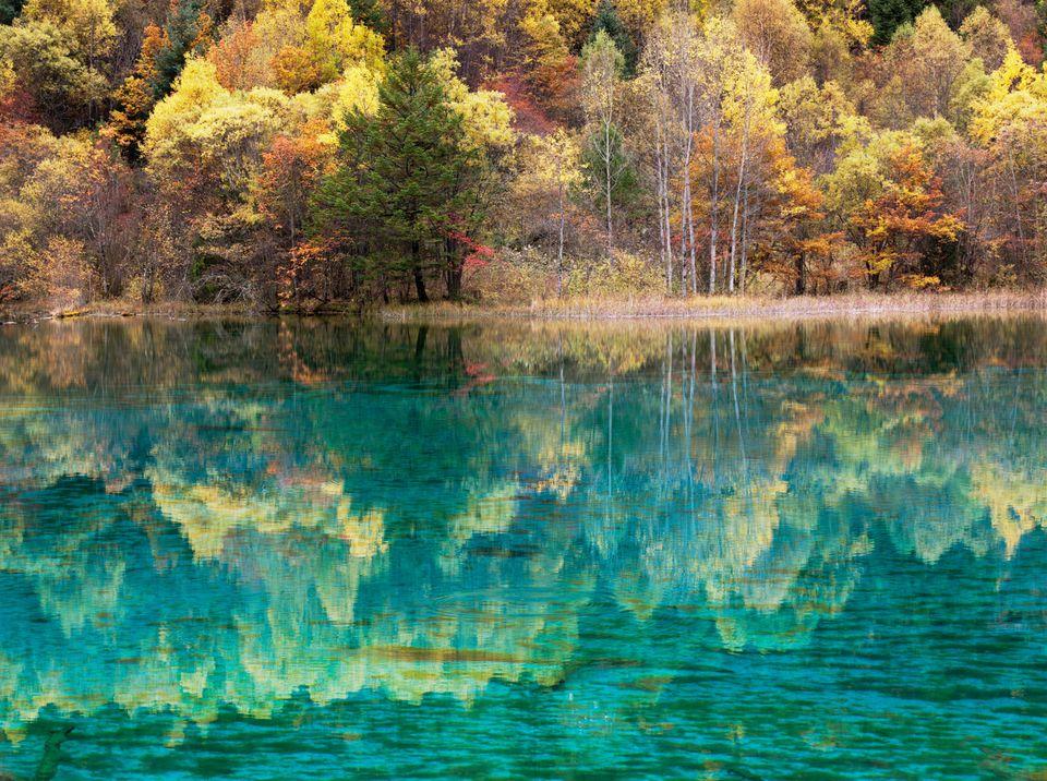 five flower lake jiuzhaijou