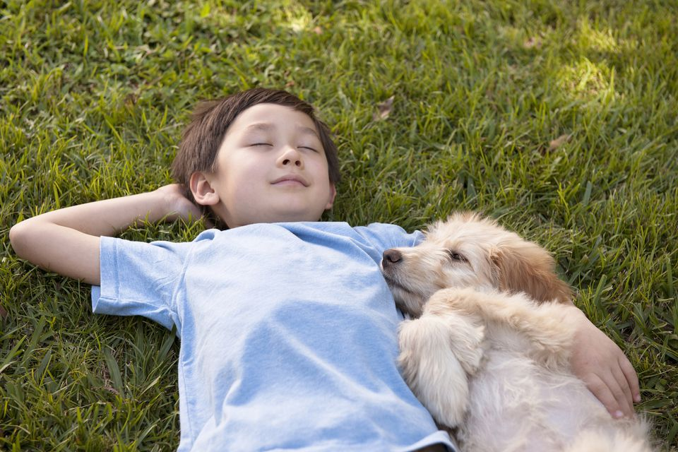 Boy taking a nap with his puppy