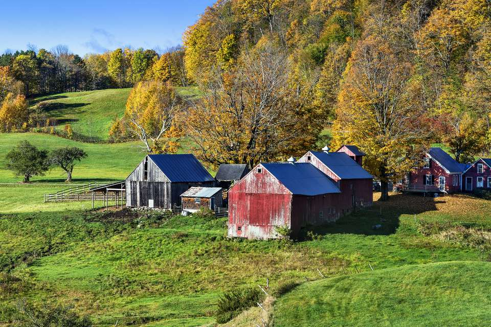 Colourful autumn farm