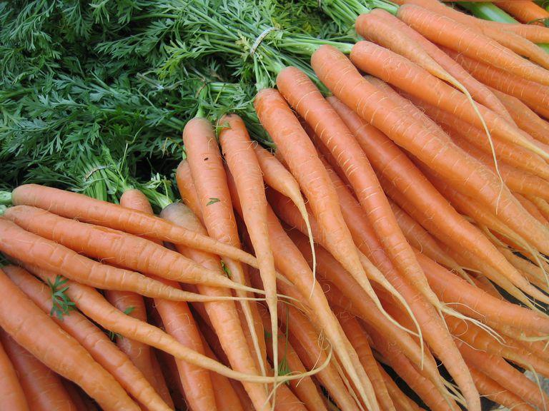 Carrots are a great source of beta-carotene, a precursor of vitamin A.