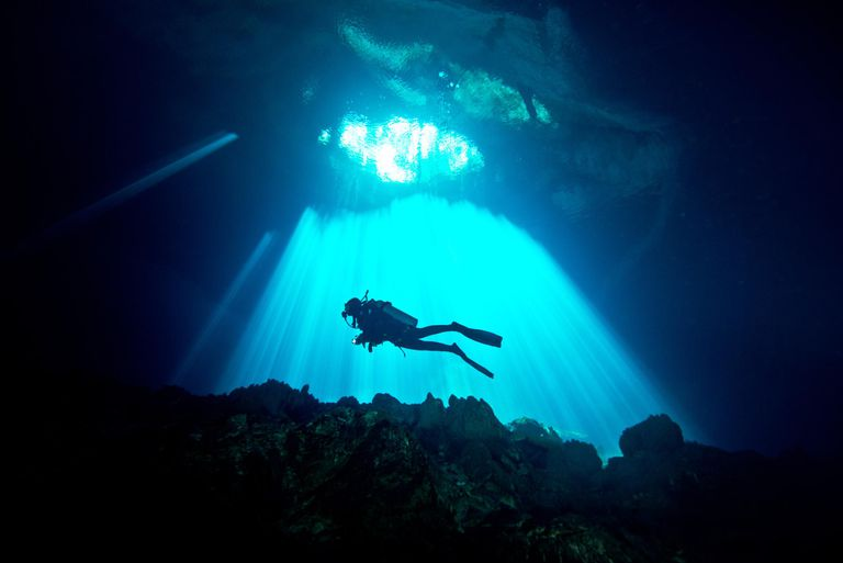 Divers diving in a cenote