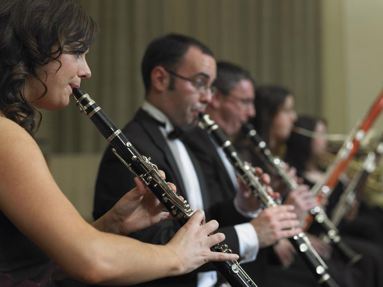 Clarinetists and bassoonists performing in orchestra, side view