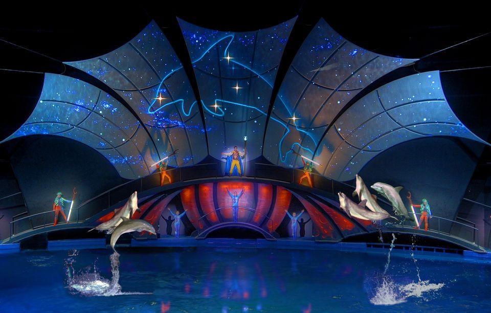 Dolphin Tales Finale