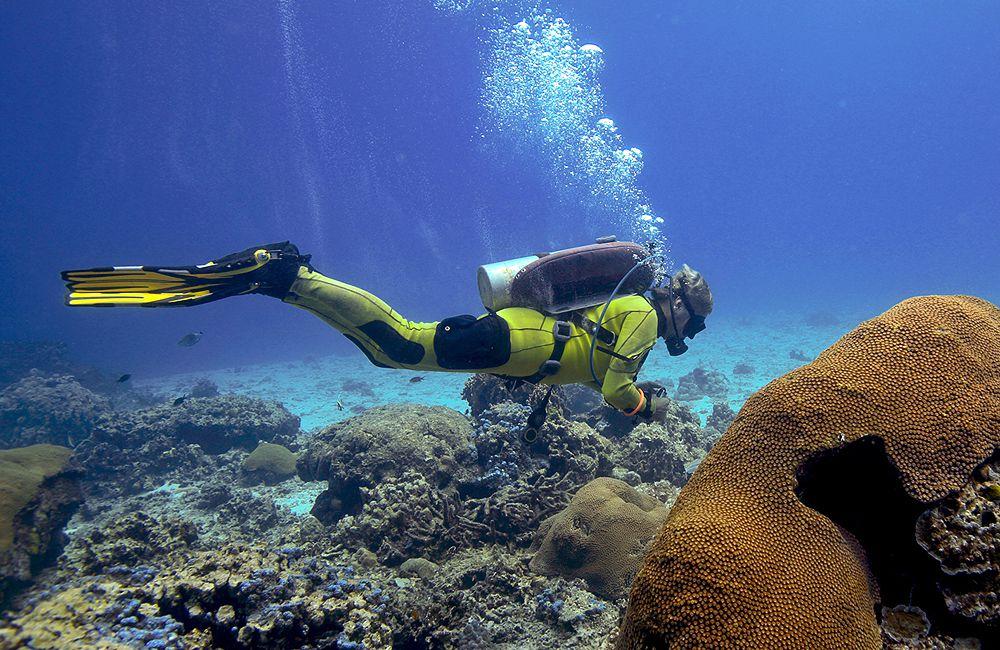 Learn Buoyancy Basics For Scuba Divers