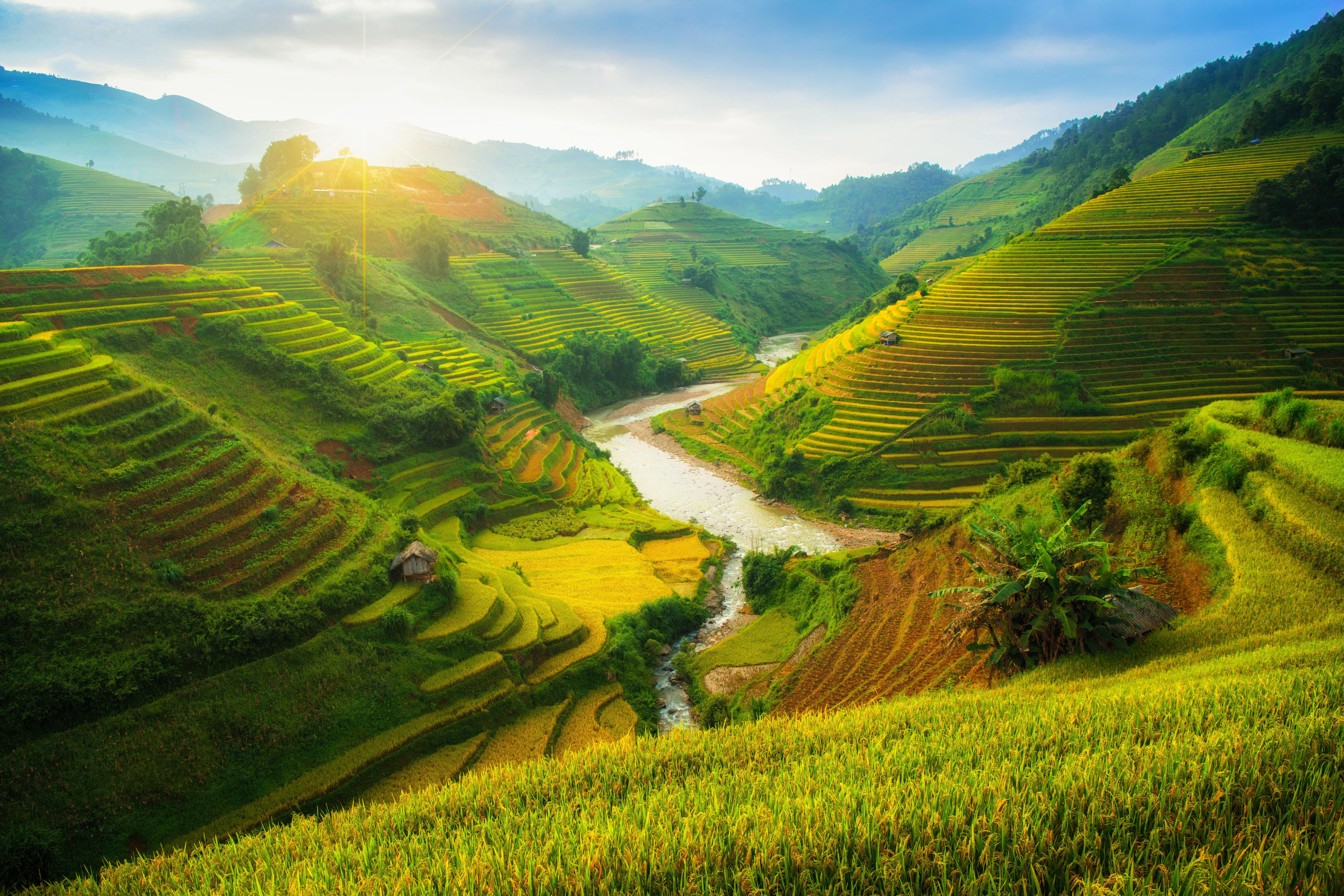 Unique Travel to Mekong Delta, Vietnam   Blank Canvas