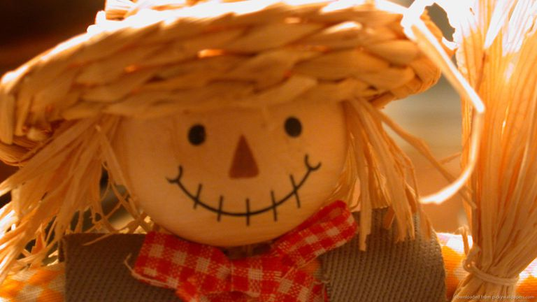 A close-up of a scarecrow.
