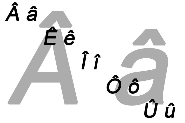 Circumflex characters