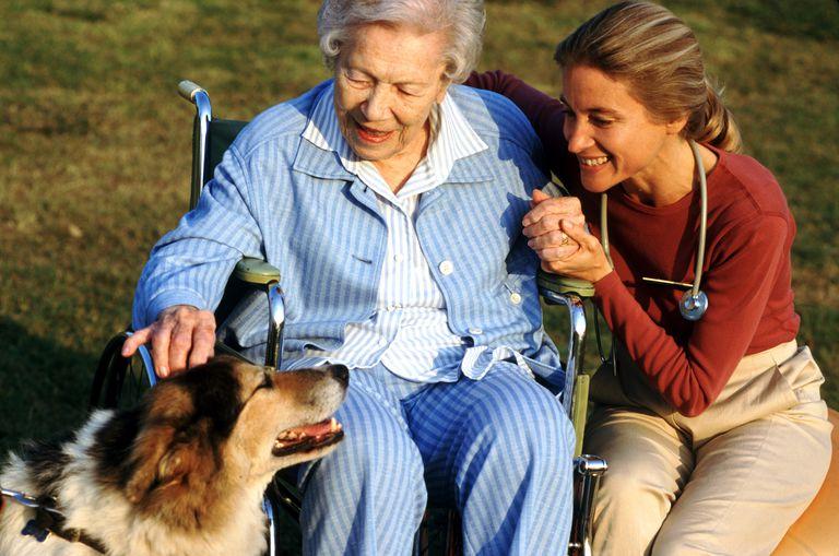 Elderly woman in wheelchair pets dog.