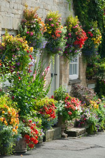 Flowering hanging basket ideas a wall garden workwithnaturefo