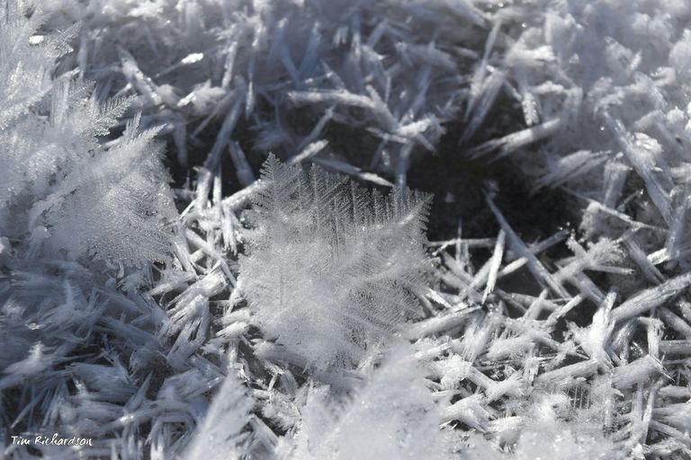 Crystals form in a storm glass prior to the arrival of a storm.