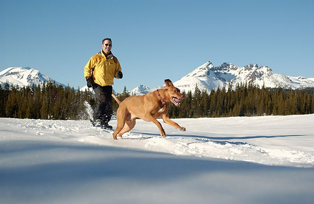 Picture of Man Snowshoeing with Dog in Snowy Central Oregon