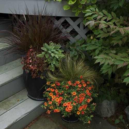 South Central Gardening Landscaping Ideas You Can Use: 19 Fall Container Garden Ideas