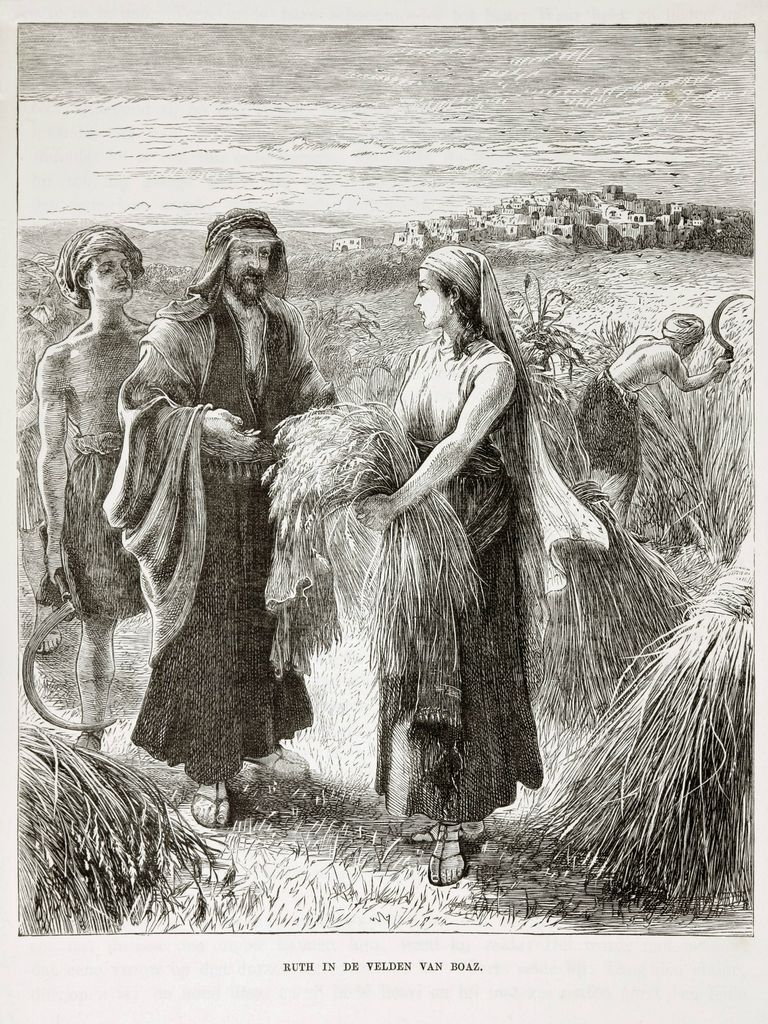 Ruth in Boaz's field
